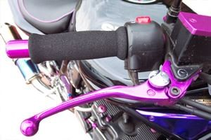 Brake and Clutch Levers (Bandit)