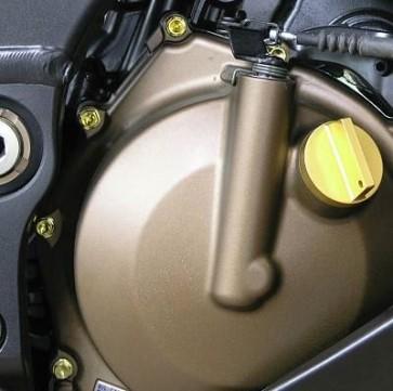 Titanium Engine Bolt Kit