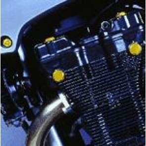Cylinder Head Plugs